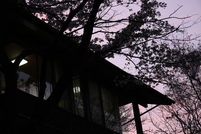 2009_04_11_6517.jpg