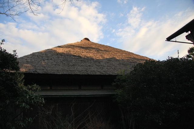 2010-01-16.jpg